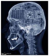 The brain as computer